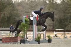 Madlen jumps a fence with her horse